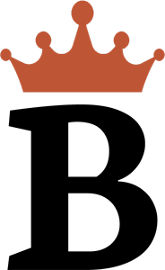 byteignite logo